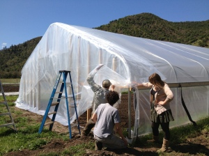We Put the plastic on the end walls for the hoop house.