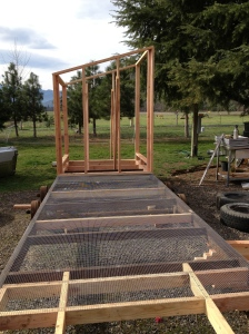 Once the big greenhouse push was over we changed gears once again. We had to get ready for our chickees to arrive